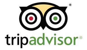 tripadvisor300